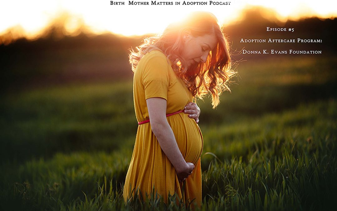 Birth Mother Matters in Adoption Episode #5 – Donna K. Evans Foundation Aftercare Program